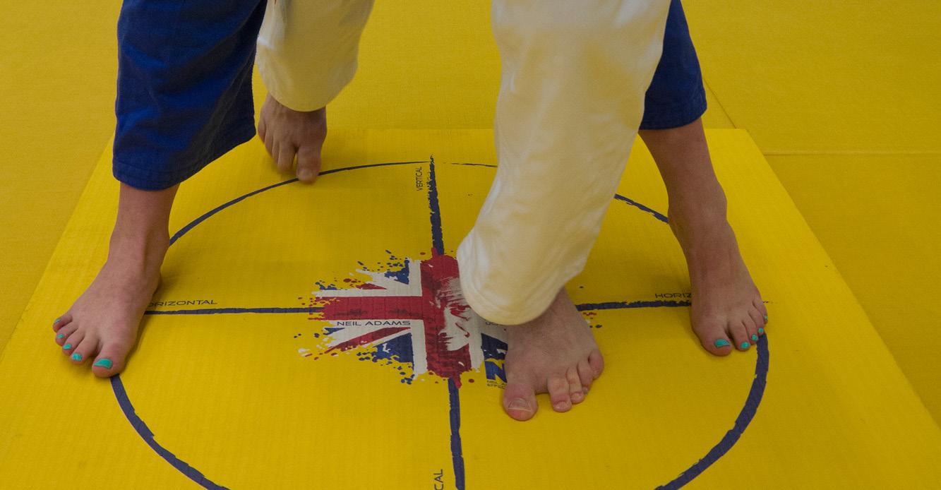 Judo footwork