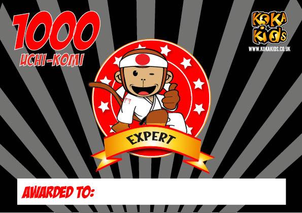 expert judo uchikomi certificate
